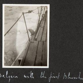 Bugges-album-6-004