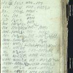 Sven Foyns dagbok - gjennombrudd 1868 (s. 184)