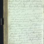 Sven Foyns dagbok - gjennombrudd 1868 (s. 201)